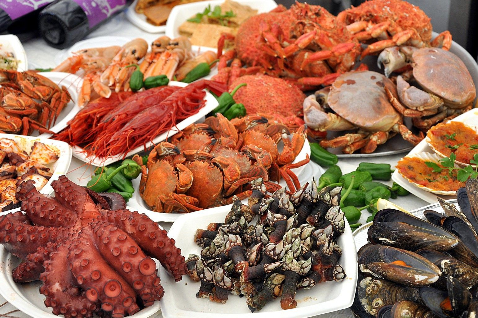 Cedeira gourmet marisco gallego fresco cada d a for Canelones de pescado y marisco